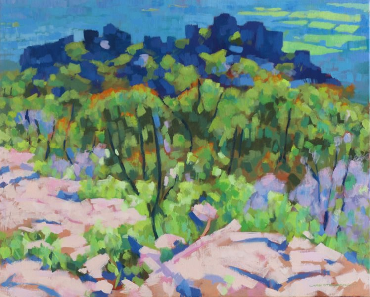 From Boronia Peak, 2012, acrylic on linen, 82 x 67 cm