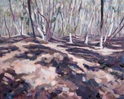 Goldmines near Maldon II, 2009, oil on canvas, 80 x 100 cm, $2850
