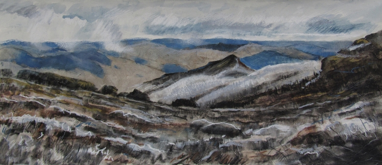 Razor Viking Wilderness, 2012, pastel and acrylic on paper, 18 x 40 cm