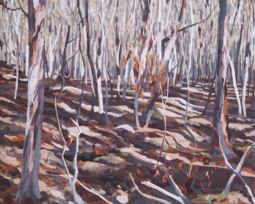 After Burning Off, Morning Light, 2007, oil on linen, 61 x 82 cm. $1850