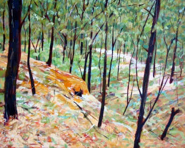 Gold Workings Near Daylesford, 2012, acrylic on linen, 82 x 102 cm