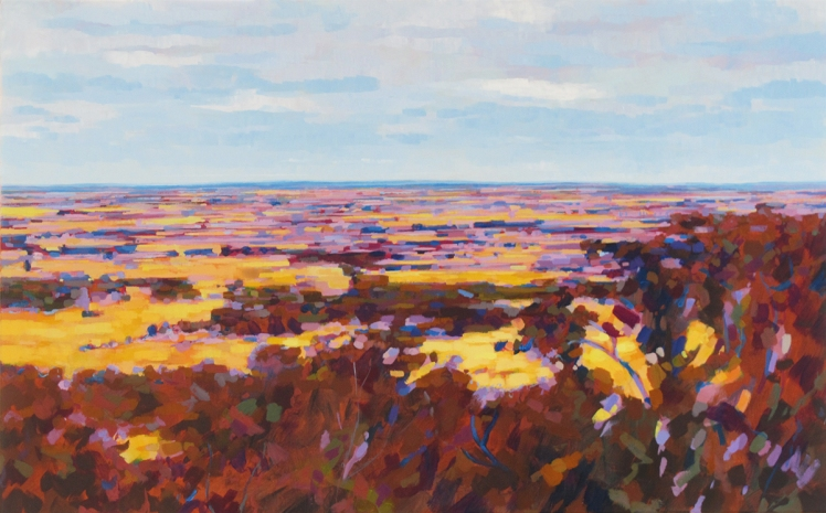 Looking North from Tarrengower, 2013, acrylic on linen, 82 x 124 cm