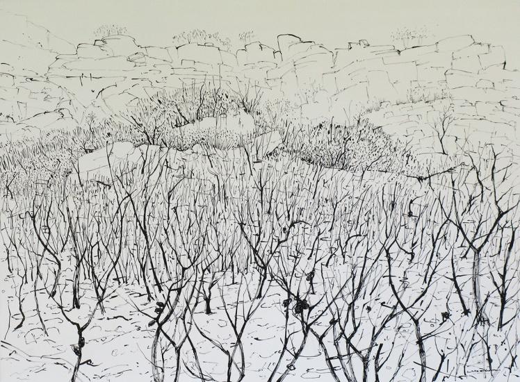 Mt Ohlssen Bagge, 2013, ink on paper, 46 x 63 cm
