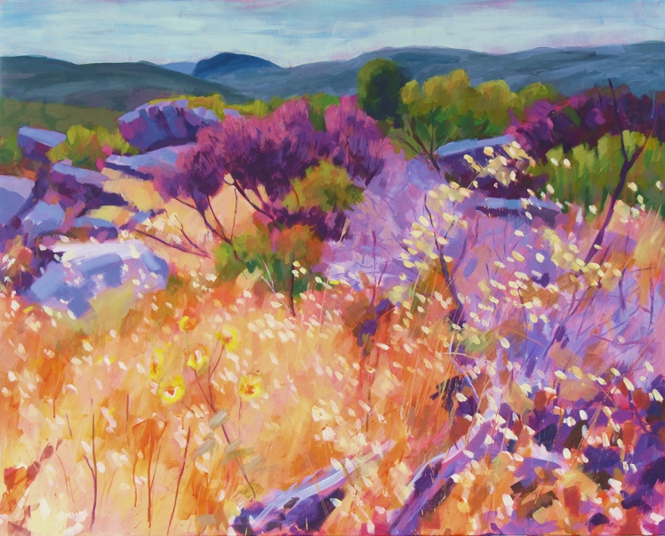 Grampians Summer, 2011, acrylic on linen