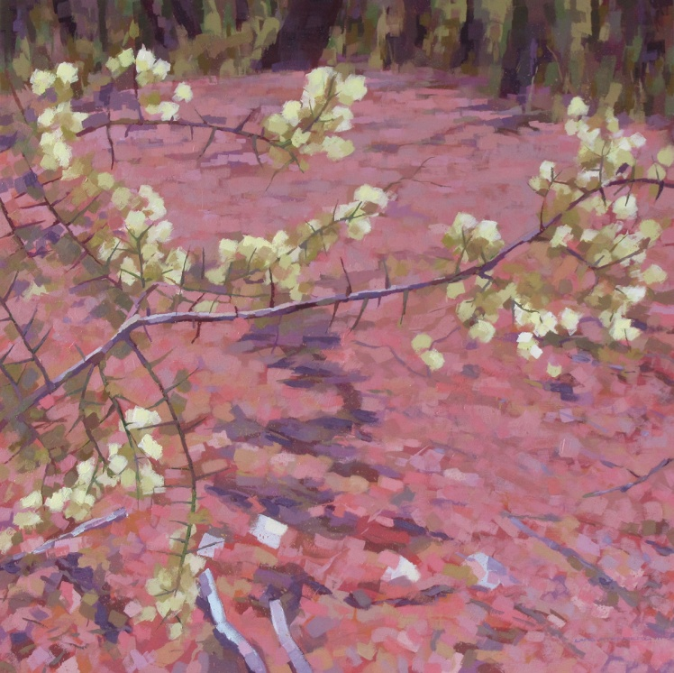 Winter Wattle, 2013, acrylic on linen, 82 x 82 cm
