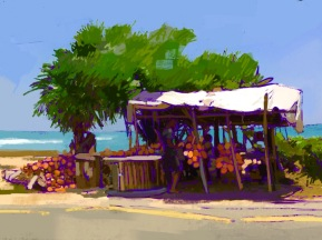 Coconut Stall, digital sketch, 2016. ProCreate Pocket on iPhone 6