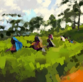Tea Pickers, Ashburnham, digital sketch, 2016. ProCreate Pocket on iPhone 6