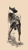 Street Dog, digital sketch, 2016. ProCreate Pocket on iPhone 6