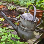 Mr McGregor's Watering Can